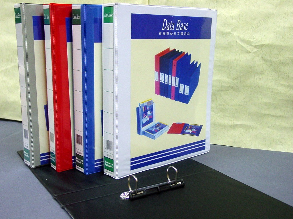 DataBase - IB-510 - 2D Ring Insert Binder A4 25mm